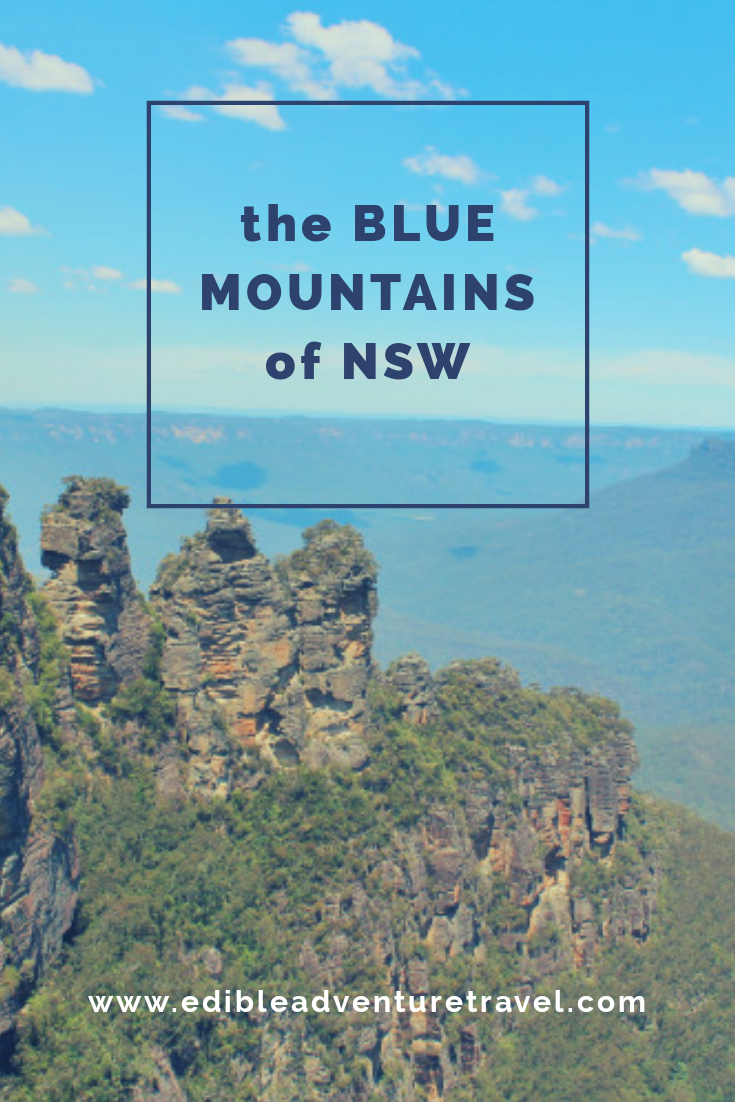 Taking a day trip with Happy Coach through the Blue Mountains