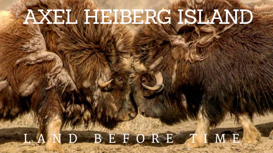 Axel Heiberg Island – Land Before Time